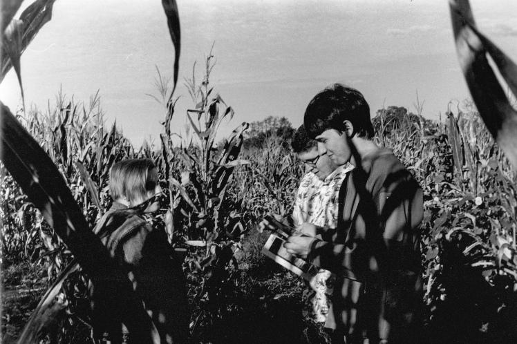 Film Nov 18_0011